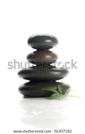 Isolated massage stones with green tree leaf - stock photo