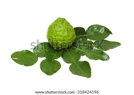 isolated of bergamot fruit and bergamot leave - stock photo