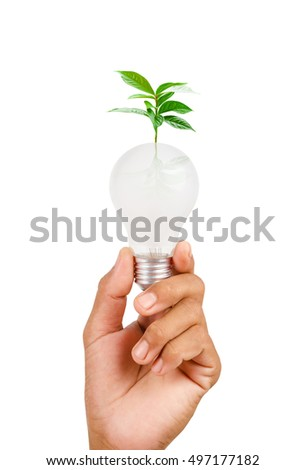 Isolated of woman hand holding LED bulb on white background, Saved clipping path.