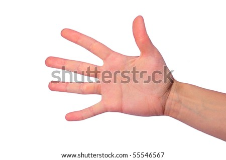 isolated open female's palm with five fingers - stock photo