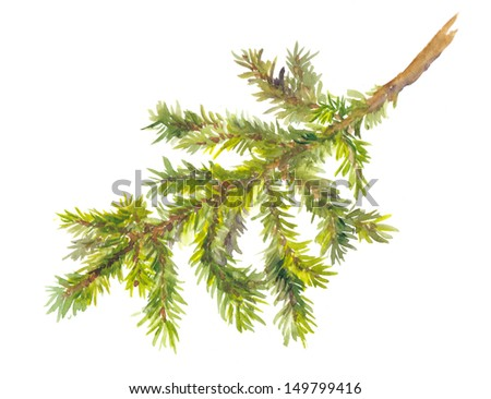 Isolated painted pine branch - stock photo