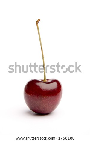 Isolated perfect juicy red cherry