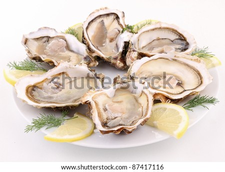 isolated plate of opened oysters on white - stock photo