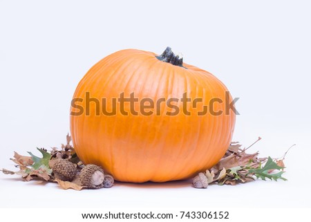 Isolated pumpkin, leaves and acorn on white background