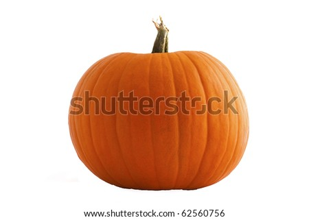 Isolated pumpkin on white. - stock photo
