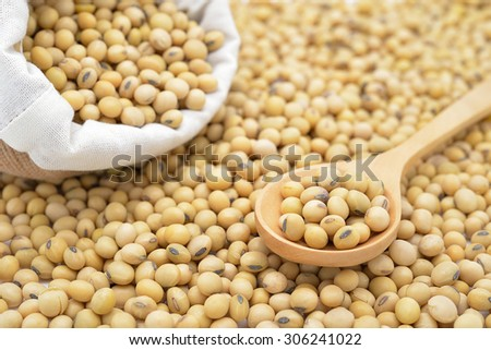 Isolated soy beans focus on wooden spoon