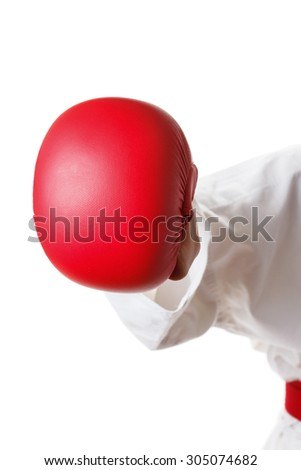 Isolated Sports Gloves competition in karate martial arts - stock photo