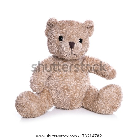 Isolated teddy bear on a white background - stock photo