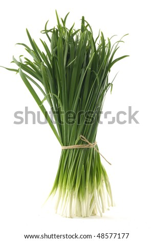 Isolated tied bundle of spring onions - stock photo