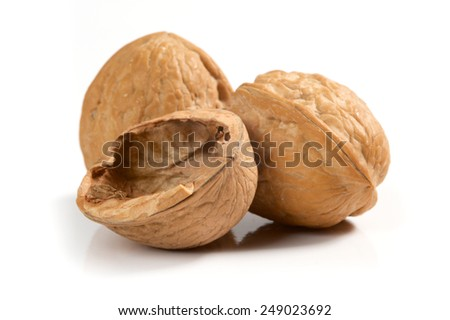 Isolated walnuts on white background - stock photo