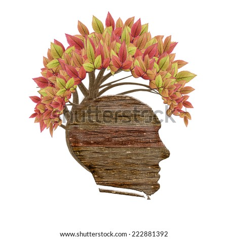 isolated wood human head and leaves  - stock photo