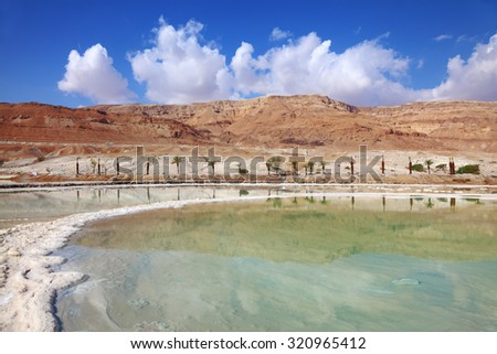 Israeli coast of the Dead Sea. Path from the salt winds picturesquely in salt water. Palms on the bank are reflected in smooth water - stock photo