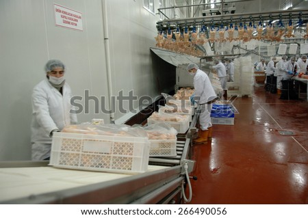 ISTANBUL, TURKEY - APR   23:  Workers at a chicken factory   on April  23, 2006 in Istanbul, Turkey.