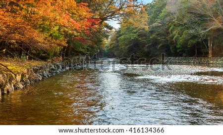 Isuzu river that runs through Ise Jingu Naiku(Ise Grand shrine - inner shrine) - stock photo