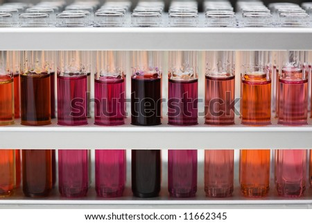 It is a lot of test tubes with color liquids. Close-up, shallow depth of field. - stock photo