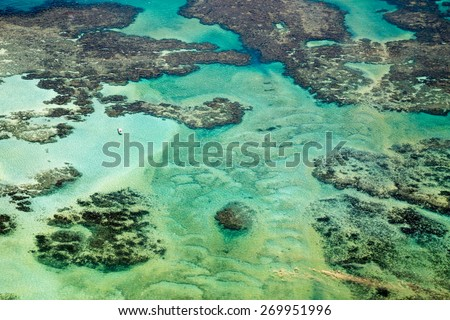 It is an area of environmental protection consists of the largest coastal reef in South America. /   coral coast / Coral Coast is located on the coast northeast Brazil . - stock photo