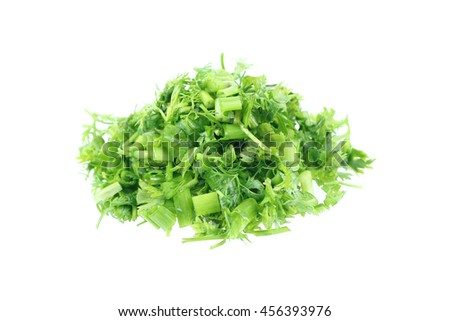 it is fresh sliced green celery isolated on white. - stock photo