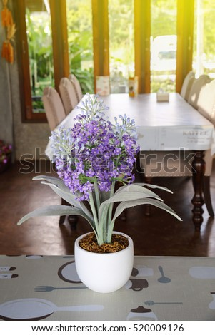 it is lavender in white pot with dining table background.