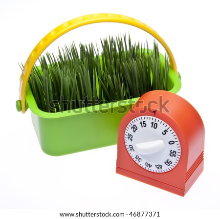 It's time for spring!  Timer clock with fresh green grass isolated on white with a clipping path. - stock photo