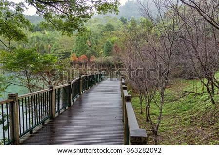 Ita Thao Lakeside Trail, a wooded trail beside Sun Moon Lake, Taiwan. - stock photo