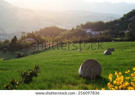Italian countryside landscape in Tuscany - stock photo