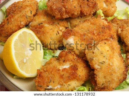 Italian fried chicken fillets with breadcrumbs, parmesan and oregano. Shallow DoF, focus on centre.