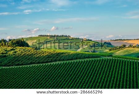 Italian landscape in Tuscany - stock photo