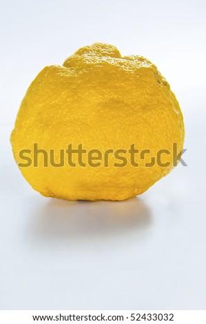 italian lemon - stock photo