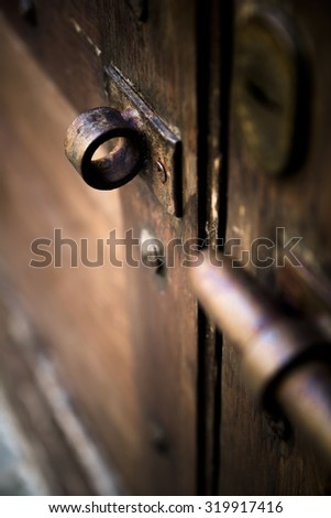 Italian old door, detail, color effect