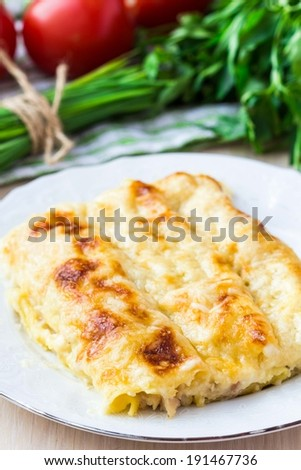 Italian pasta Cannelloni stuffed with meat, white Bechamel sauce, cheese crust, delicious dinner - stock photo
