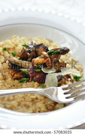 italian risotto with mushrooms - stock photo