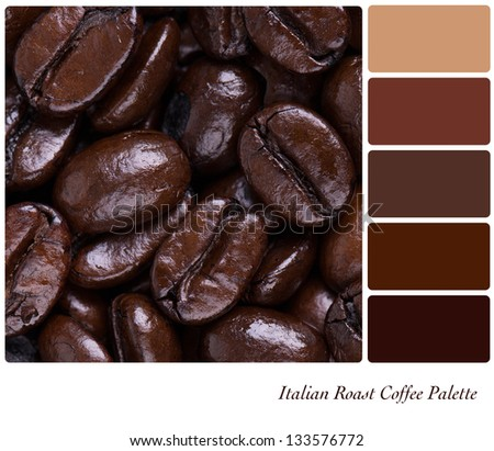 Italian Roast coffee bean colour palette with complimentary swatches. Part of a series of five images showing grades of roasted coffee. - stock photo