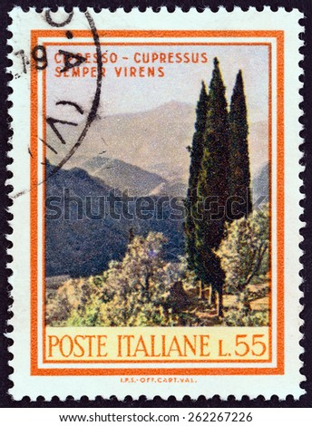 """ITALY - CIRCA 1968: A stamp printed in Italy from the """"Trees and Bushes """" issue shows Italian Cypress (Cupressus sempervirens), circa 1968.  - stock photo"""