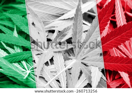 Italy Flag on cannabis background. Drug policy. Legalization of marijuana - stock photo