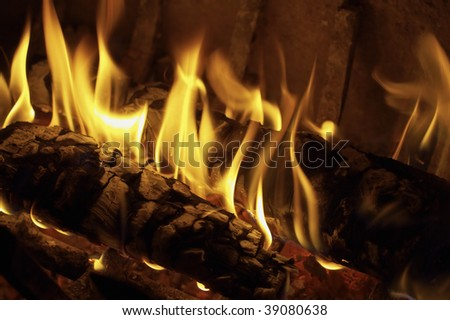 Italy, Lazio, countryside, oak wood burning in a fireplace - stock photo