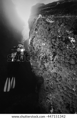 Italy, Ponza Island, Tyrrhenian sea, U.W. photo, scuba diver and a rocky wall full of yellow Anthozoans (Parazoanthus) - FILM SCAN