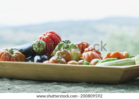 Italy, Tuscany, Magliano, Close up of variety of vegetables - stock photo