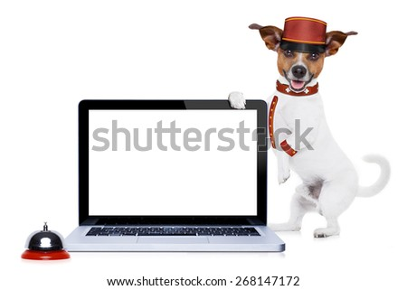 jack russell bellboy dog holding a blank and empty tablet pc computer screen at hotel, where pets are welcome and allowed,isolated on white background - stock photo