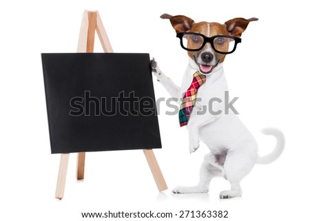 jack russell dog as businessman or boss, holding a blank and empty blackboard , isolated on white background - stock photo