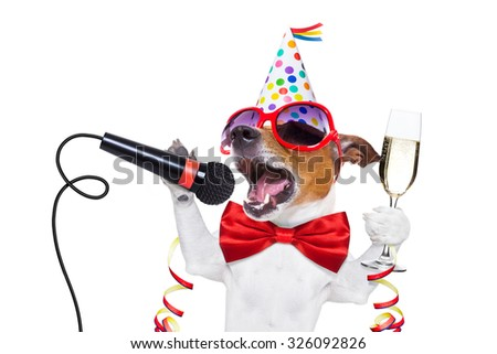 jack russell dog celebrating new years eve with champagne and singing karaoke with a microphone, isolated on white background - stock photo