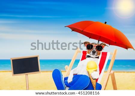 jack russell dog eating ice cream on a cone waffle on a beach chair or hammock with sunglasses on summer  vacation holidays - stock photo