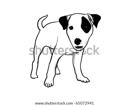 Jack Russell illustration - stock photo