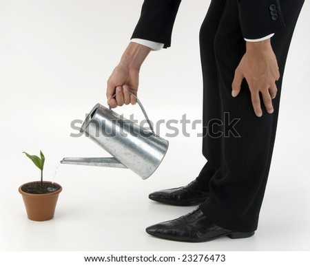 Jacketed and tied business man watering a terracotta vase with green plant
