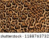 jaguar fur pattern seamless...