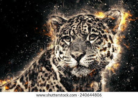 Jaguar illustration with fire - stock photo