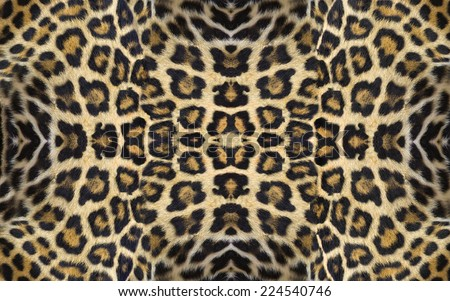 jaguar skins - stock photo