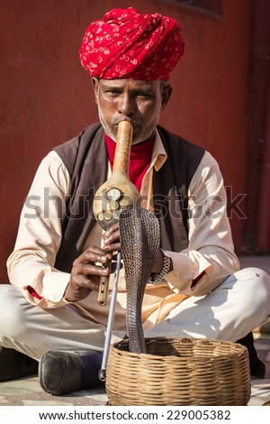 JAIPUR, INDIA - NOVEMBER 28: A snake charmer is playing the flute for the cobra sitting by the wall in the Fort Amber on November 28, 2013 in Jaipur, India - stock photo