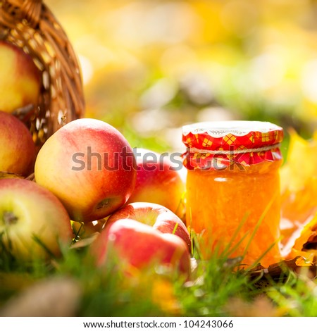Jam in glass jar and red juicy apples on a grass. Autumn harvest concept - stock photo