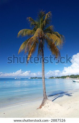 Jamaica Blue - stock photo