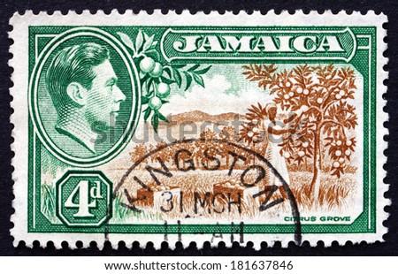 JAMAICA - CIRCA 1938: a stamp printed in Jamaica shows Citrus Grove, circa 1938 - stock photo